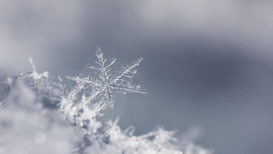 Hópehely (hópehely, hó, hópihe, )