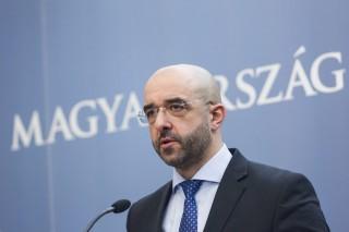 Kovács Zoltán (Kovács Zoltán)