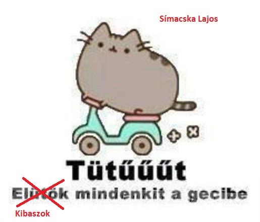 Simicska mém (Array)