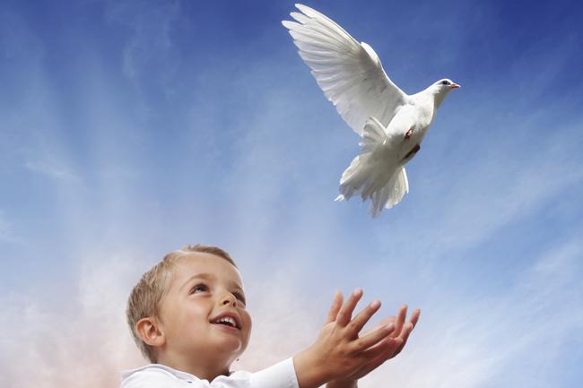 béke (béke, békegalamb, béke kötés, Isten tudja)