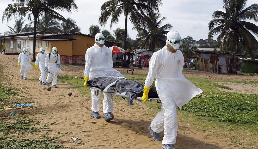 ebola (ebola)