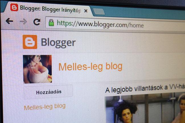 google-blogger-porno-tiltas-01 (technet, google, blog, blogger, kereső, internet, pornó, szex, felnőtt, erotika, meztelen, )