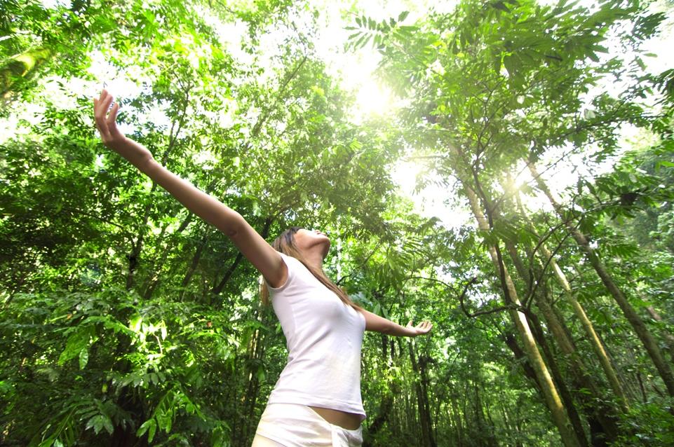 nő fákkal (nő, fák, természet, )