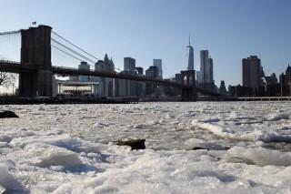 sarkvidéki hideg az Egyesült Államokban (hideg, )