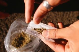 Füvezés (marihuána, füves cigi, füvezés)