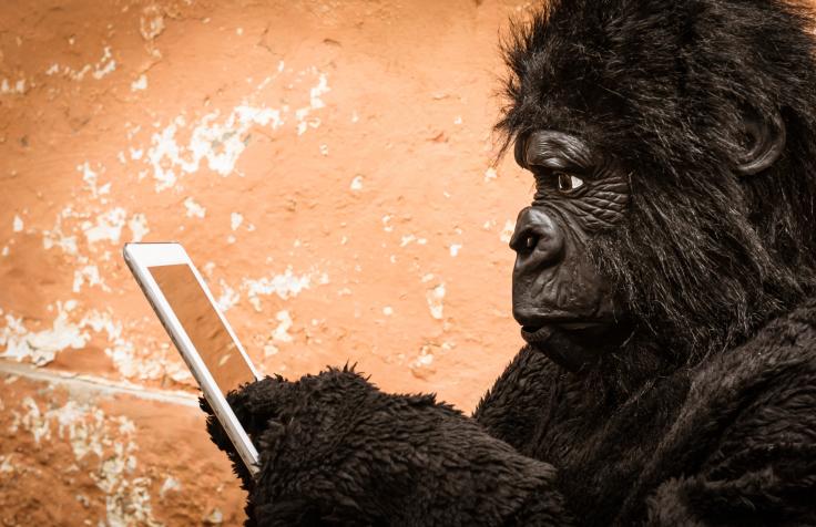evolúció 2 (majom, okostelefon, fejlődés, )