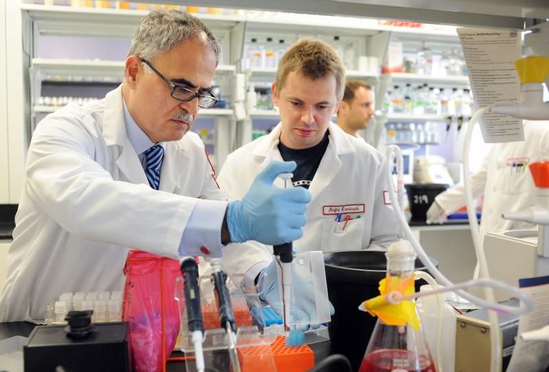 genom (genetika, genom, dns, rns, fehérje, nukleotid, nukleinsav, kutatás, tudomány, hulladék-dns)