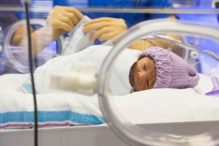 újszülött inkubátorban (újszülött, inkubátor, )