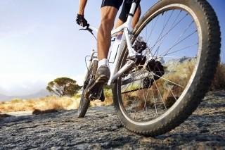 bicikli(210x140).jpg (bicikli, )