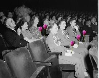 cinema-nonap(960x640).jpg (cinema, mozi, nőnap)