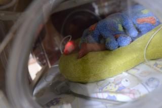 inkubátor (inkubátor)