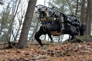 killerbot (robot, gyilkos robot, autonóm fegyverrendszer, drón, pilóta nélküli repülő, uav, robotika, harci robot, ensz, tudomány)