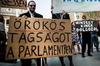 politikus tüntetés (politikus tüntetés)