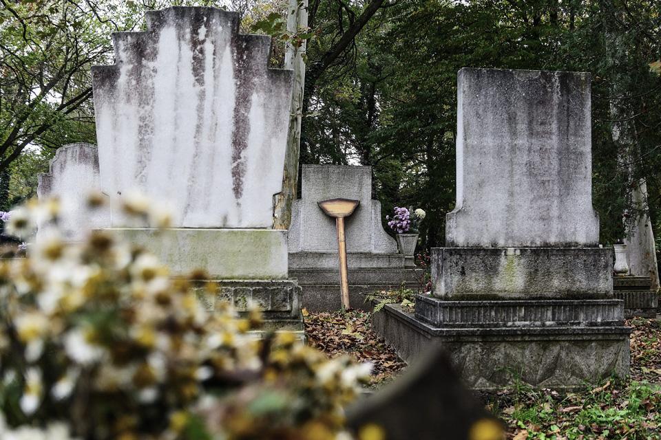 temető (temető, parcella, szociális temetés, )