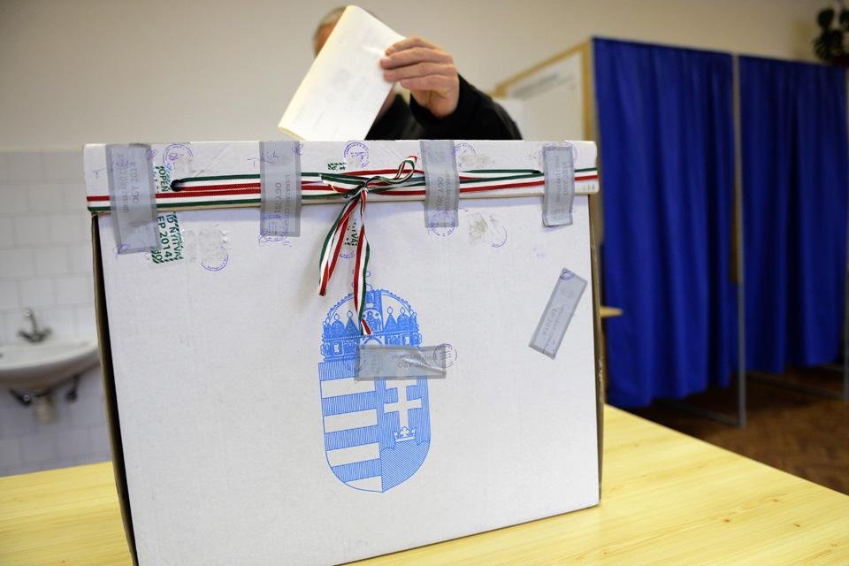 választás, szavazás (választás, szavazás)