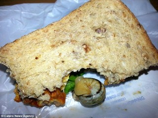 Csigás szendvics (Array)
