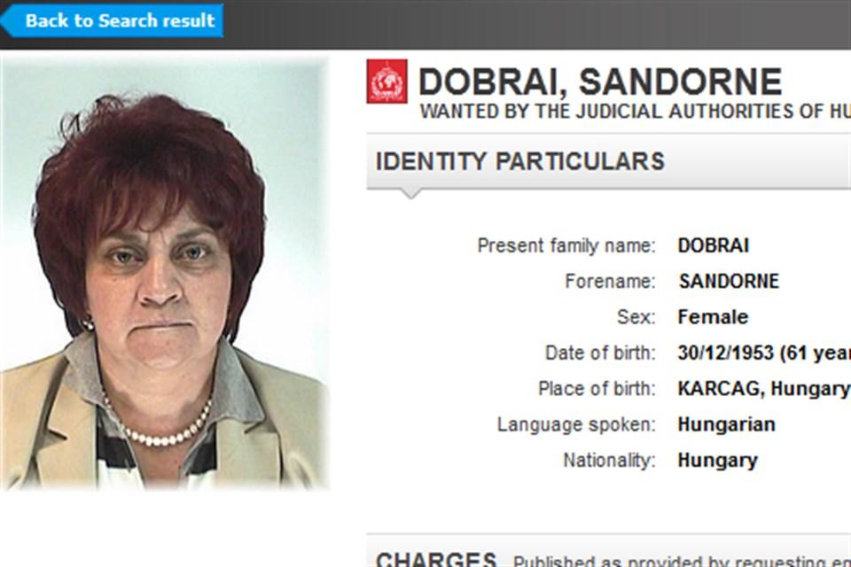 Dobrai-Sandorne(960x640).jpg (Array)