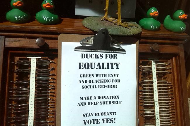 Dublin, melegházasság, szavazás 03 (Array)