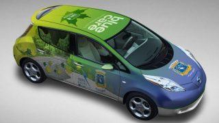 Nissan Leaf (Array)