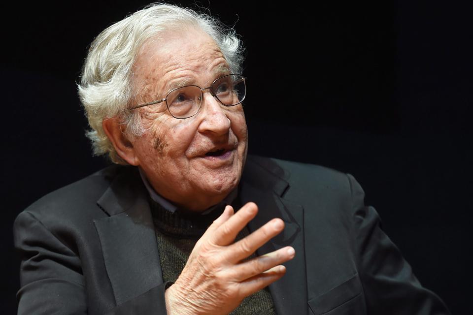 Noam Chomsky (Array)