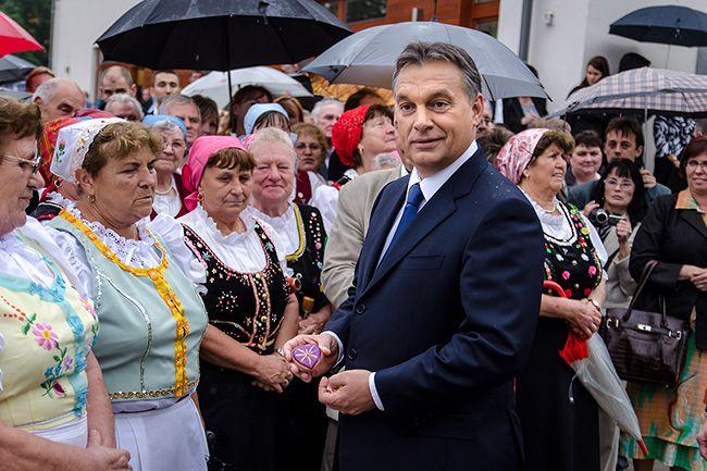 Orbán, Pilis (Array)