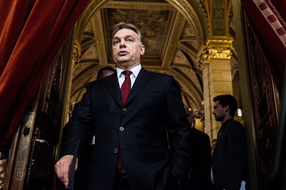 Orban-Viktor(960x640).jpg (Array)