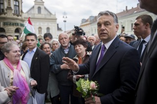 Orban(40e85c8b-9dbc-414e-be62-004e9750a48e)(210x140).jpg (Array)