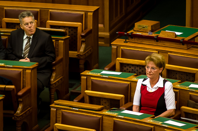 Parlament, Hoffmann Rózs (Array)