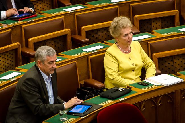 Parlament, Mátrai Márta (Array)
