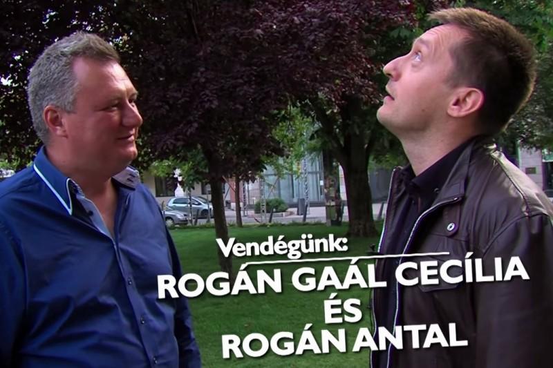 Rogán + Körmendi (Array)