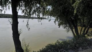 duna áradás (Array)