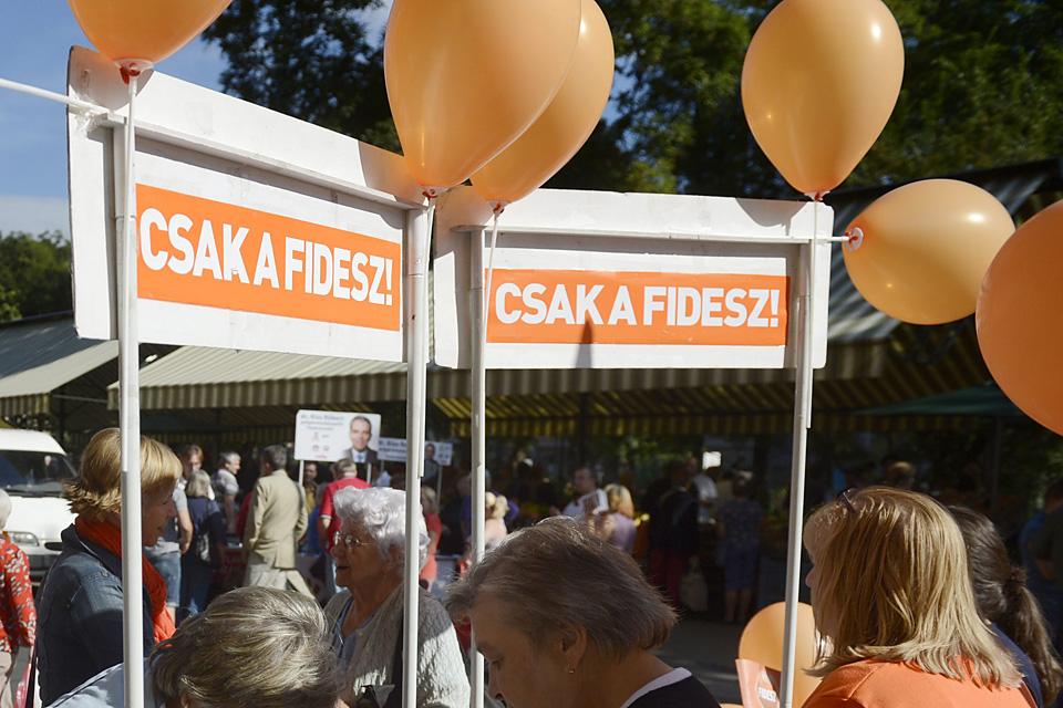 fidesz (Array)