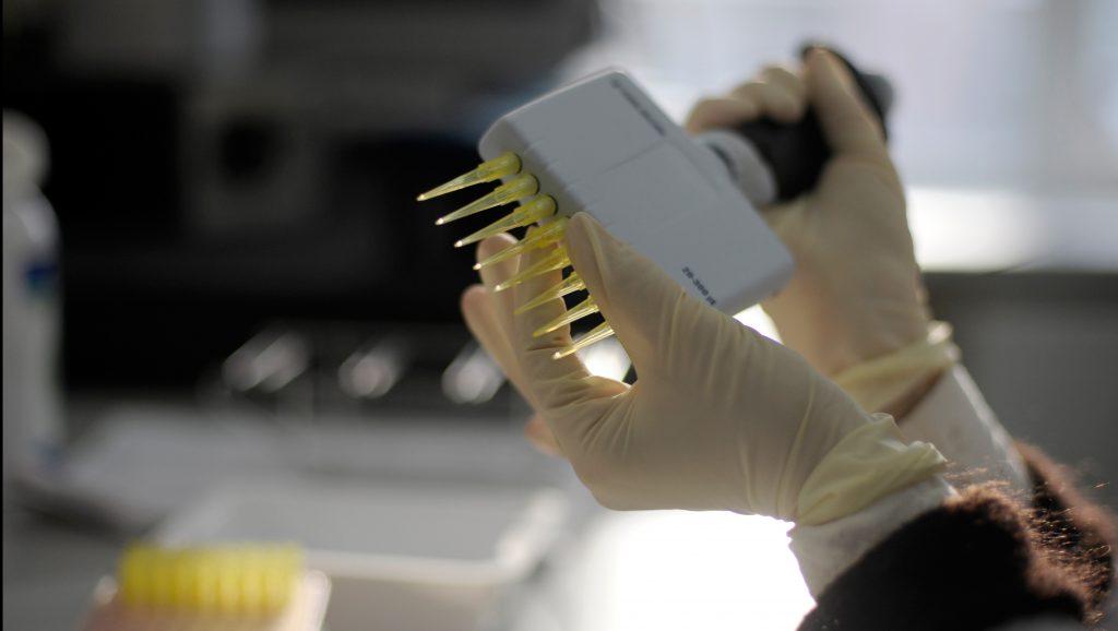 genom-4 (Array)