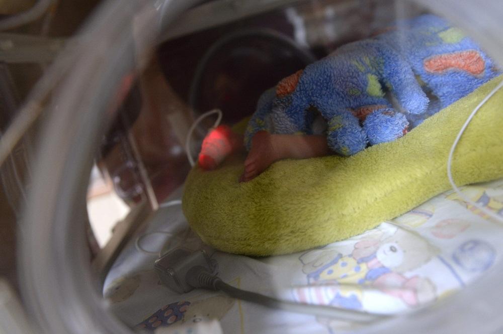 inkubátor (Array)