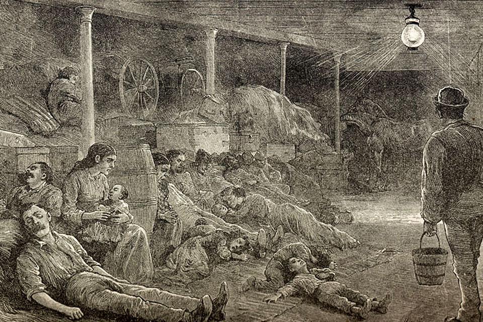 kolera (kolera, )