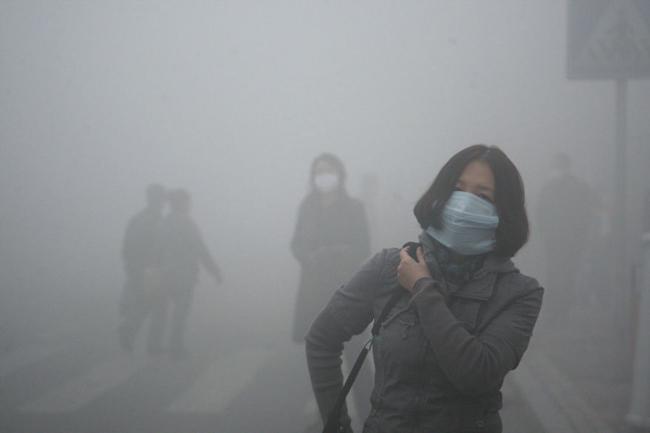 környezetszennyezés 16 (Array)