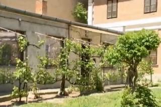 pécsi lakás (Array)