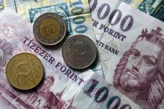 penz-forint-euro-frank-deviza-penzugy-gazdasag(6)(13)(430x286).jpg (Array)