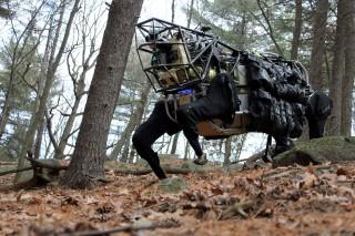 robotgepárd (Array)