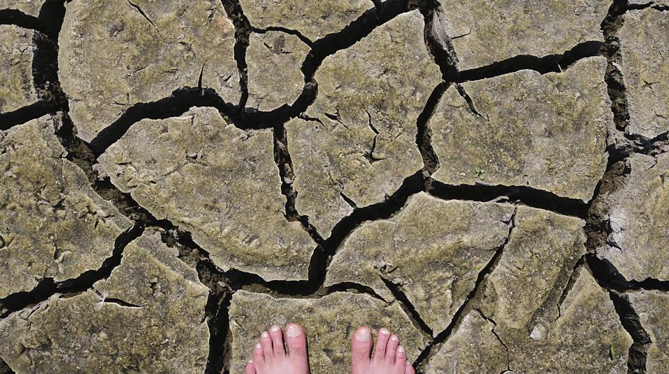 szárazság (Array)