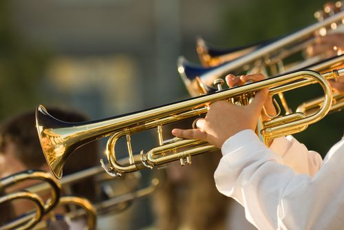 zenész (Array)