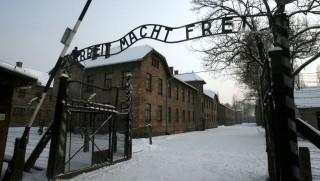 Auschwitz (Array)