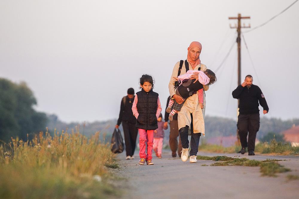 Bevándorlók (Array)