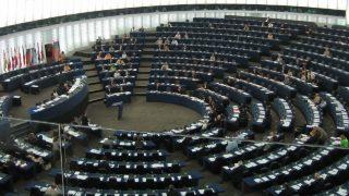Európai Parlament (Array)