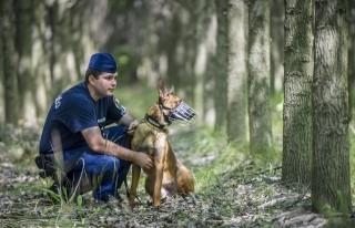 Határőr kutyával (Array)