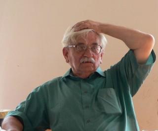 Ludvík Vaculík (Array)