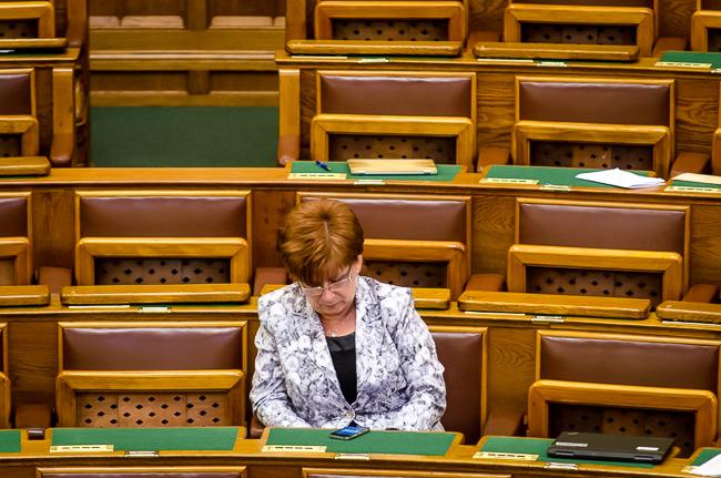 Parlament, divat (Array)
