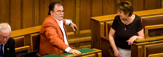 Parlament, zakó (Array)