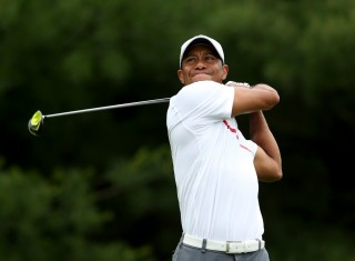 Tiger Woods (Array)