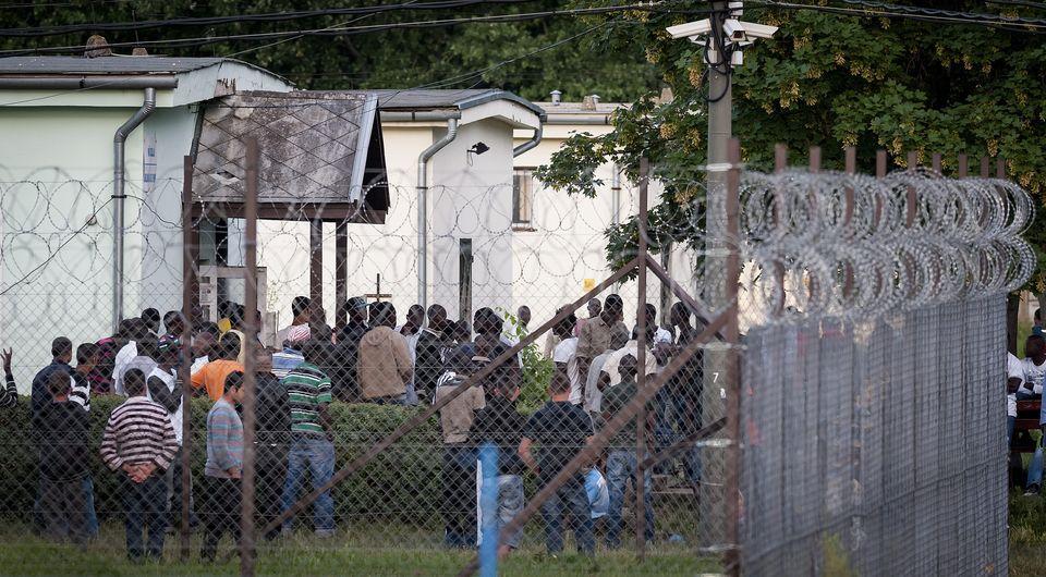 debreceni menekülttábor  (Array)